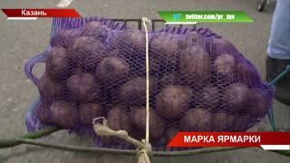 Полмиллиона тонн фермерской продукции завезли в Казань | ТНВ