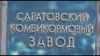 В Саратове закрыли комбикормовый завод