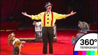 Основной состав цирка на Цветном бульваре отправился на гастроли по Подмосковью