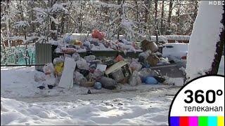 Жители Пушкина уже несколько месяцев находятся в мусорном плену