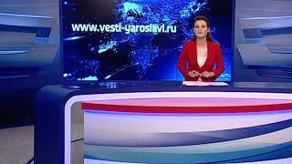 Лиса забрела во двор жилого дома в Ярославле