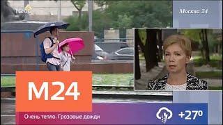 Гроза и шквалистый ветер ожидаются в Москве - Москва 24