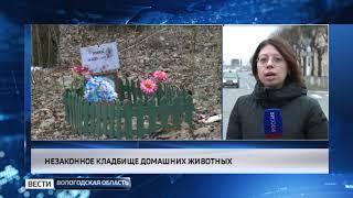 Кладбище домашних животных ликвидируют в Череповце