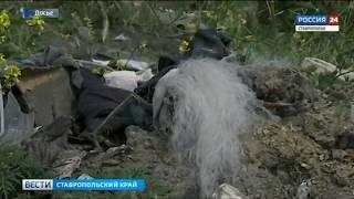 В Ставрополе чествовали героев