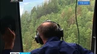 На территории Иркутской области не зафиксировано ни одного лесного пожара
