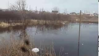 Orenday/ Потоп на Бердах