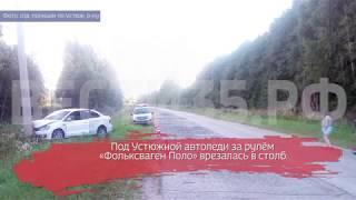 В Устюженском районе из-за лося автомобиль врезался в столб