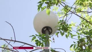 В Томской области разработают стандарт благоустройства