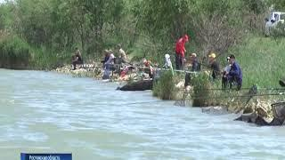 Кому можно, кому - нет: в Цимлянском водохранилище запретили ловить берша