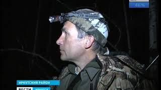 Медведя в посёлке Маркова Иркутского района застрелили