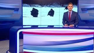 МЧС: В Ярославской области действует запрет выхода на лед