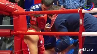 В Хасавюрте завершается Чемпионат Дагестана по боксу