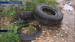 Пьяный водитель грузового фургона насмерть сбил 11-летнюю девочку в Любытине