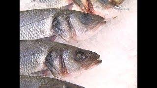 Проверку мяса и рыбы в магазинах Самары провел Россельхознадзор