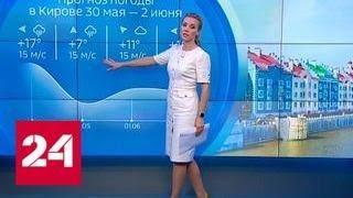 """""""Погода 24"""": желтый уровень погодной опасности объявлен в Москве и области - Россия 24"""