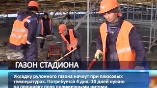 """Газон для стадиона """"Самара Арена"""" выращивают в Германии"""