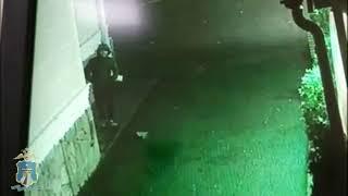 Кража шуб в Ессентуках