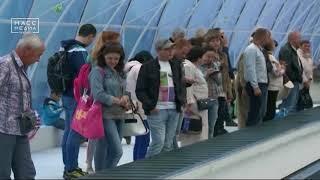 Пассажиры камчатского аэропорта будут получать багаж быстрее | Новости сегодня | Происшествия