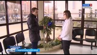 """Осужденных за мошенничество застройщиков """"Интерстроя"""" освободили"""