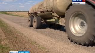 Увеличить посевы рапса и возродить льнопроизводство намерены аграрии Ивановской области
