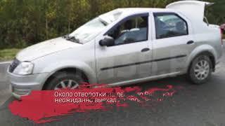 78-летний велосипедист погиб под колесами «Рено» в Сокольском районе