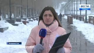 В Приморье снова снег и метель, когда весна вступит в свои полные права