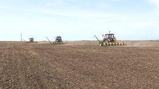 Волгоградские аграрии завершают весенние полевые работы
