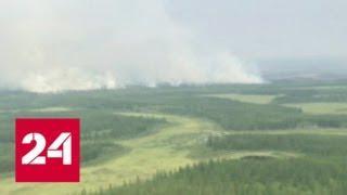 Леса на всей территории России продолжают гореть - Россия 24