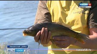 Под Пензой прошел чемпионат по рыбной ловле