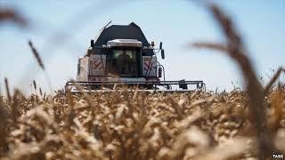 Цена вопроса - 01.11.18 Как сегодня живется фермерам в Башкирии?