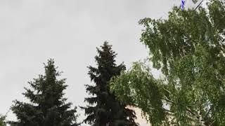 Сильный ветер и дождь с грозой придут в Самарскую область в ближайшие часы