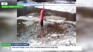 Житель Ревды спас пса, провалившегося под лёд
