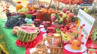 В Пензе на улице Славы прошел фестиваль садоводов