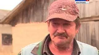 Москвич Андрей Виноградов сменил жизнь в столице на фермерство в костромской глубинке