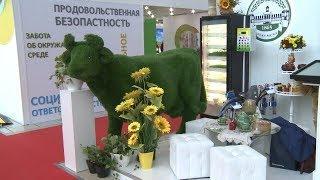 """Аграрии Мордовии участвуют в """"Золотой осени 2018"""""""