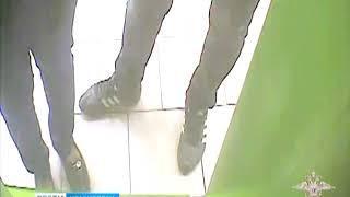 В Подмосковье задержана группа красноярских фальшивомонетчиков