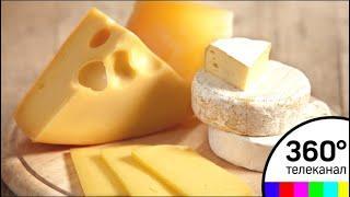 «Будем делать моцареллу»: новая сыроварня открылась в Шаховской