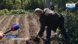 Жителей многоквартирного дома в поселке Канал лишают огородов
