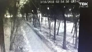 Неизвестные устроили пожар в Центральном парке