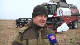 """Специальный репортаж """"Элита Амурских семян """""""