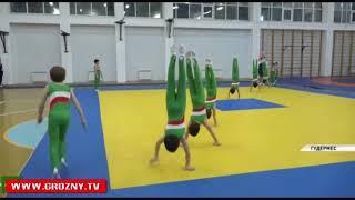 В Чечне открылась третья по счету гимнастическая школа «Ак-Барс»