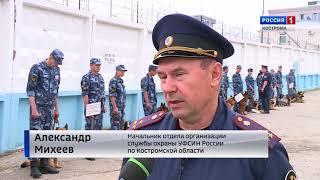 В Костроме стартовали соревнования УФСИН по многоборью со служебными собаками
