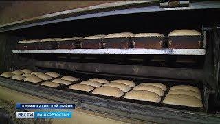 Вся правда о хлебе: специальный репортаж «Вестей»