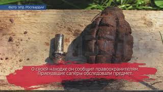 Житель Бабаево нашёл в огороде гранату