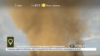 Мобильный репортёр - 02.07.18