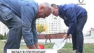 Комсомольский сквер Белгорода пополнился новыми растениями