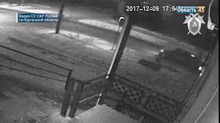 За смерть пешехода в Зауралье будут судить депутата сельской Думы