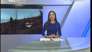 Байкальская нерпа — в десятке любимых диких животных у экотуристов