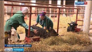Фермеры из Параньгинского района уже решили, на что потратят грант в 3 миллиона