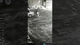 В Петропавловске автовора сняла скрытая камера